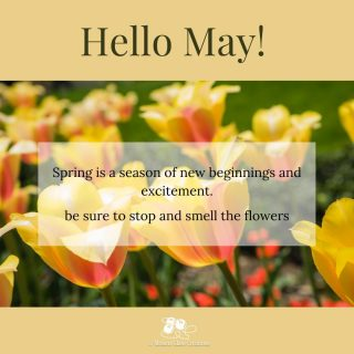 I love May! daffodils and tulips everywhere.  leaves on the trees, and the sound of lawn mowers on the weekends!  More sunshine, less rain!⁠ .⁠ What makes you stop and smell the flowers? 😀🌷☀️😎